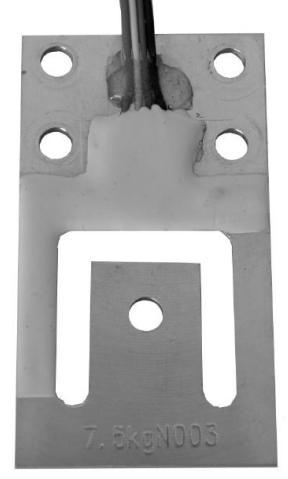 L6P1, Vážicí snímače